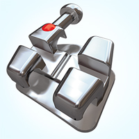 Bionic Stainless Steel Bracket System